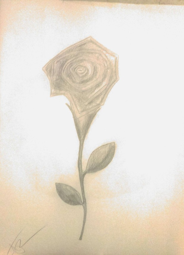 rose-pic