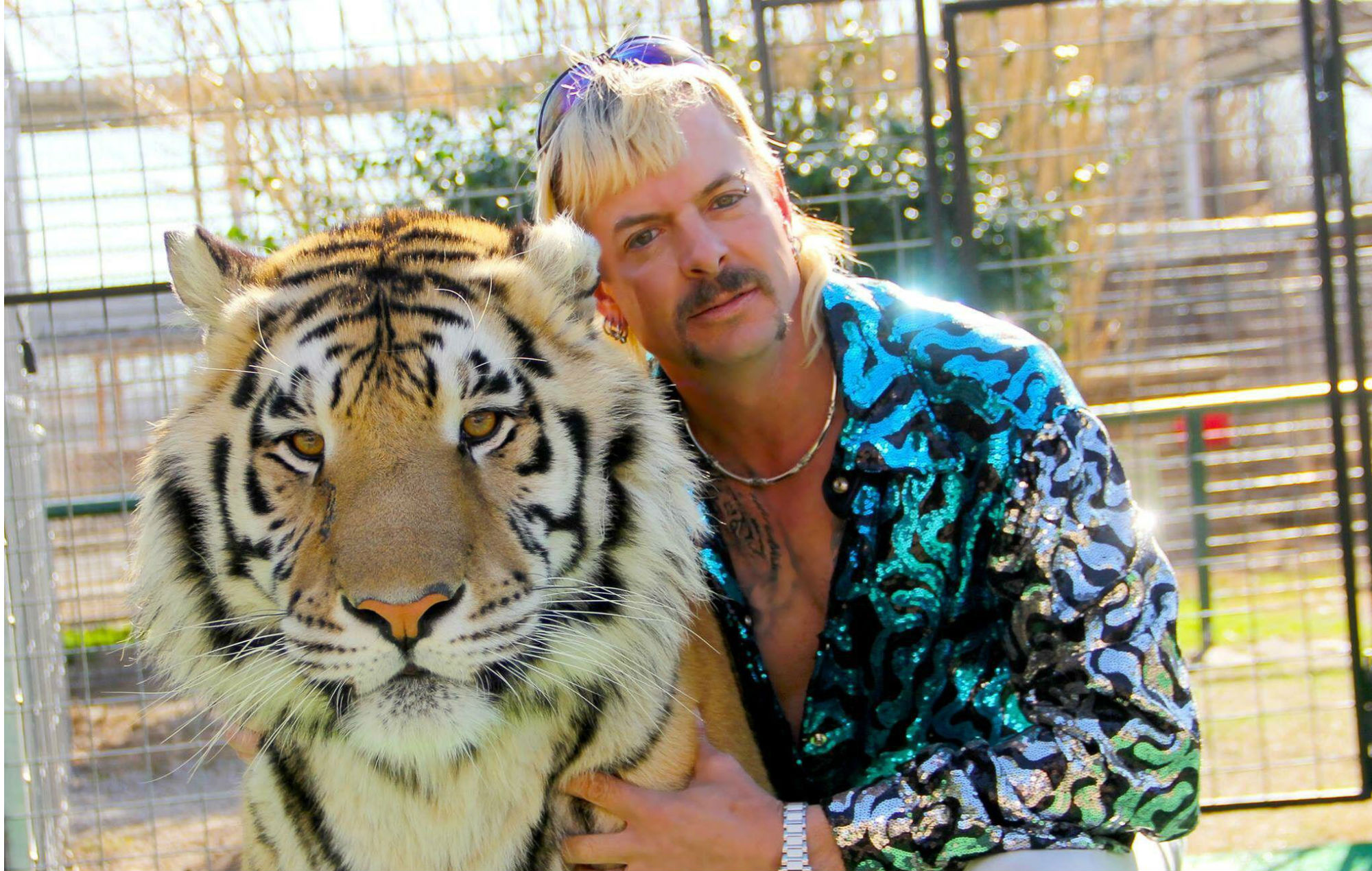 joeexotic-tigerking-2000x1270-1.jpg